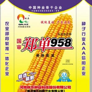 郑单958